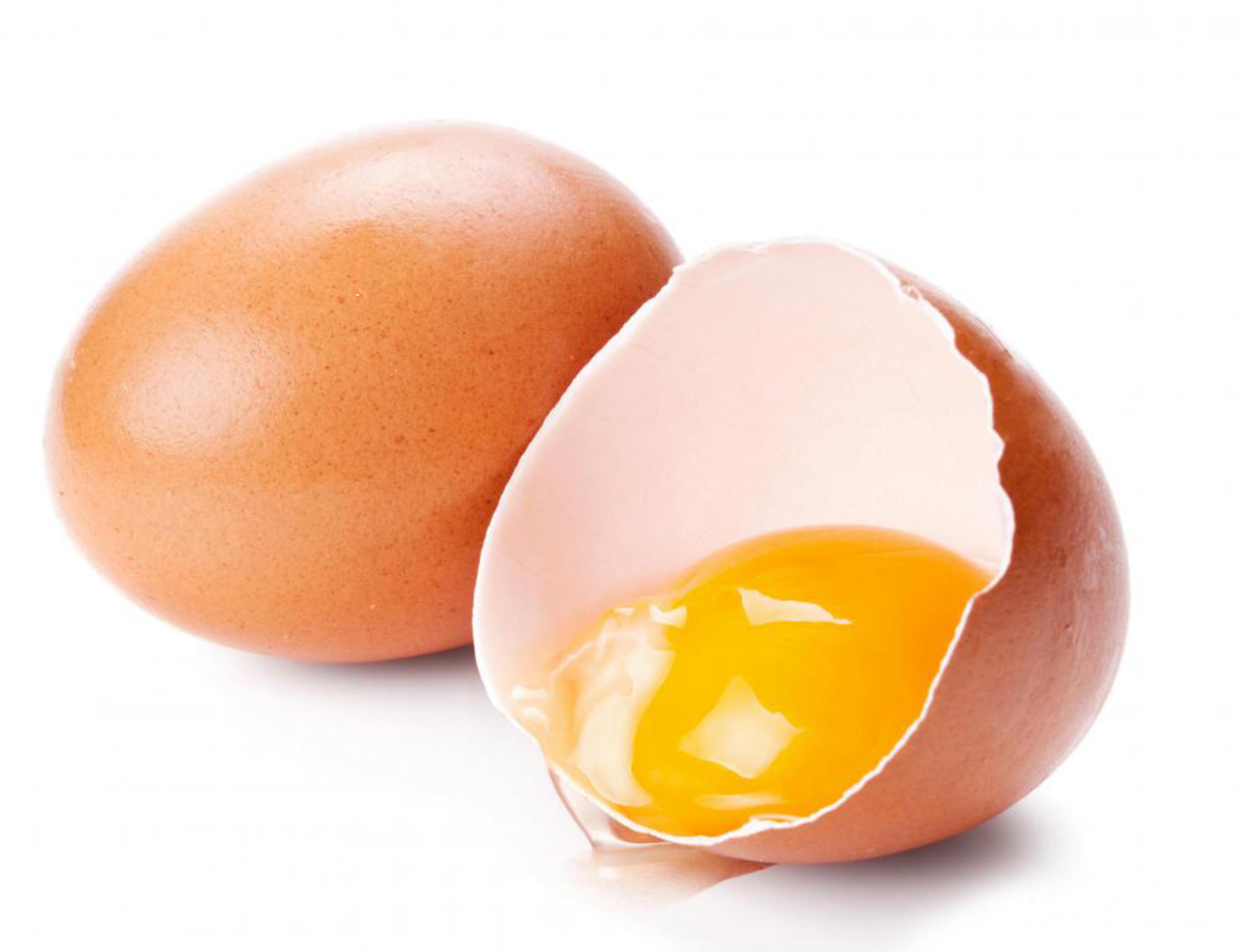 Αποτέλεσμα εικόνας για αβγο